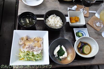 hinohara201206.jpg