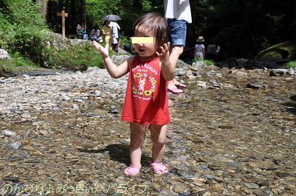 hinohara201212.jpg