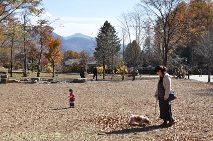 kiyosato201212.jpg