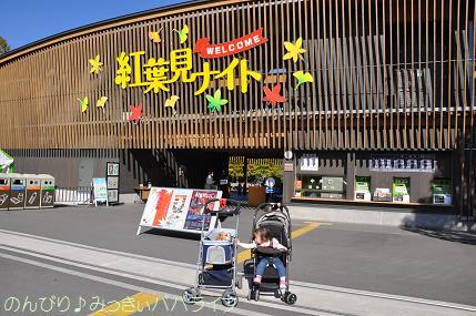shinrinkoen201201.jpg