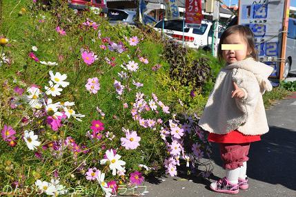 shinrinkoen20120201.jpg