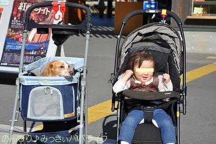 shinrinkoen201203.jpg