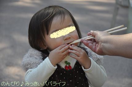 shinrinkoen201207.jpg