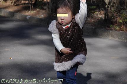 shinrinkoen201212.jpg