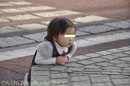 shinrinkoen201215.jpg