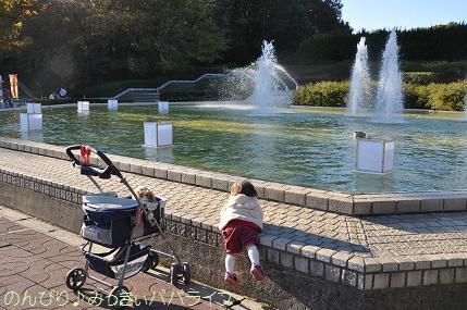 shinshikoen20120207.jpg