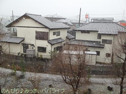 snow20130101.jpg