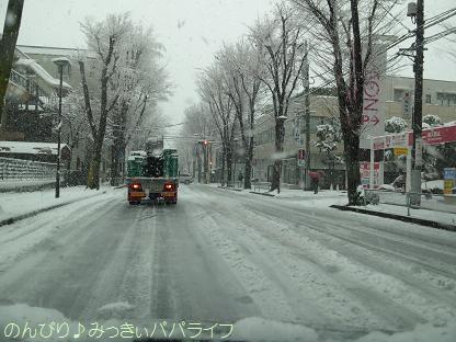 snow20130103.jpg