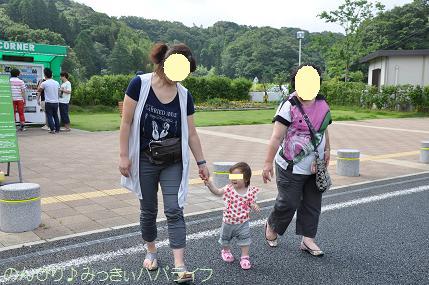 tateyama201207007.jpg