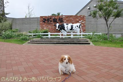 tateyama201207011.jpg