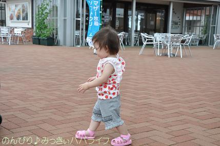 tateyama201207013.jpg