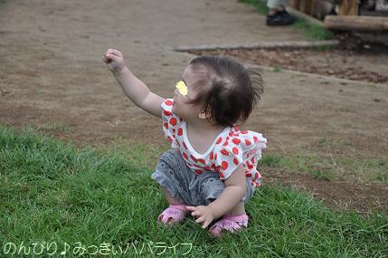 tateyama201207020.jpg