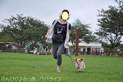 tateyama201207021.jpg