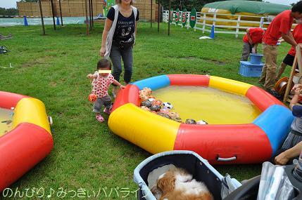tateyama201207036.jpg
