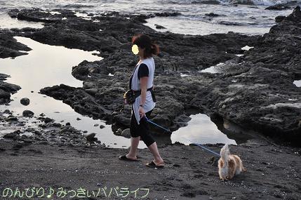 tateyama201207052.jpg