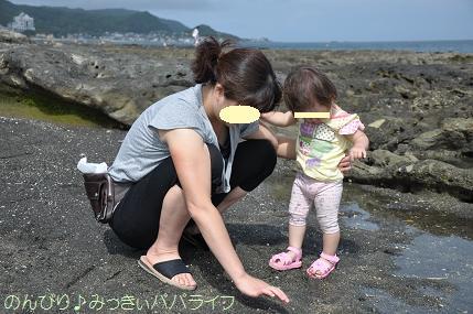 tateyama201207076.jpg