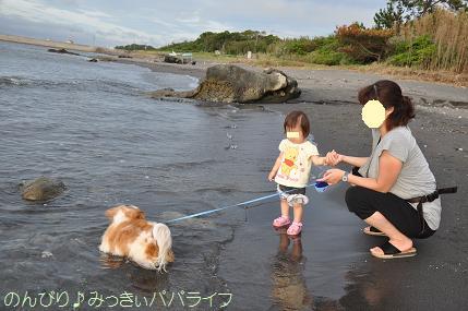 tateyama201207085.jpg