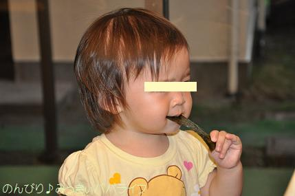tateyama201207096.jpg