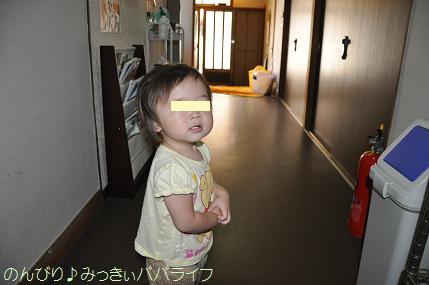 tateyama201207098.jpg