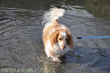 tateyama201207101.jpg