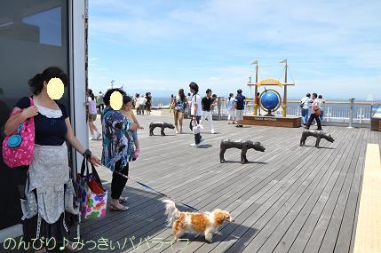tateyama201207113.jpg