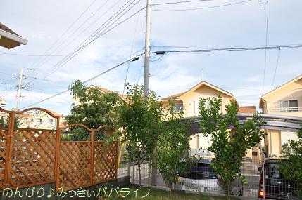 typhoon401.jpg