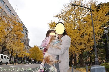 yamashitakoen02.jpg