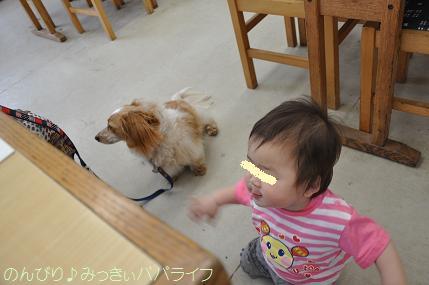 yoshimi07.jpg