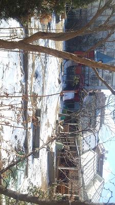 ★雪の園庭1