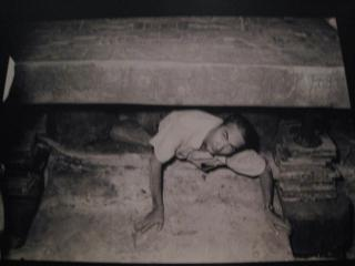 棺の中を調査