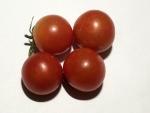 トマト141026