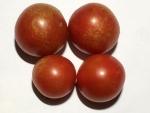 トマト141029