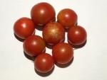 トマト141103