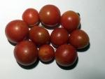 トマト141107