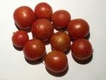トマト141110