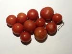 トマト141116