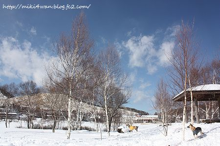 2月雪遊び