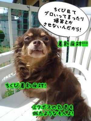 ちくべりーP1370834