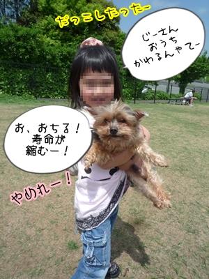 恋人P1350551