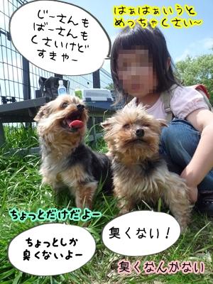 恋人P1350567