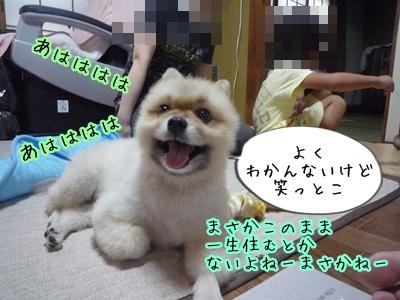 あゆみP1370981