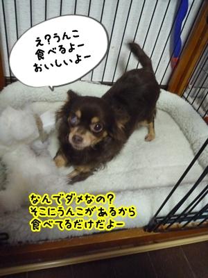 ちくP1380424