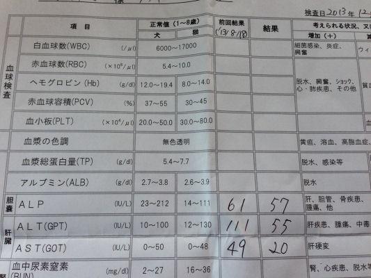 wan_20131201132128ce6.jpg