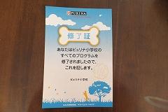 DSC121104082-r.jpg
