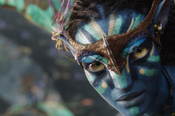 Avatar-p1.jpg