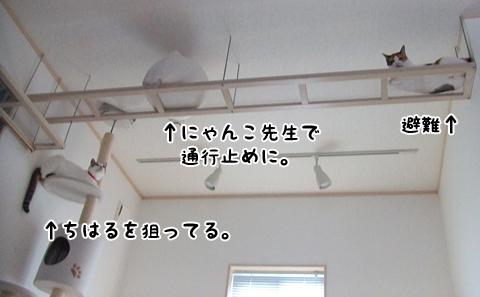 120920_夏休み日記おまけ06