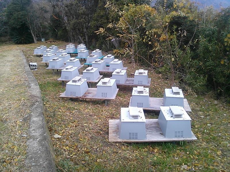 巣箱のカバー