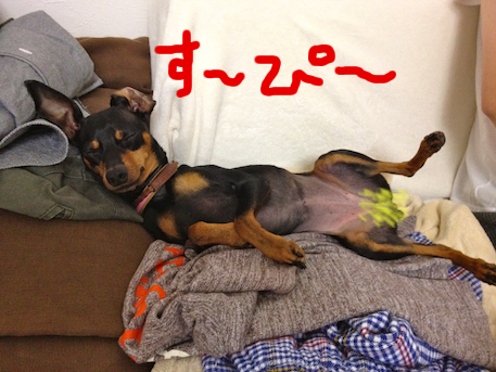 20120601-6.png