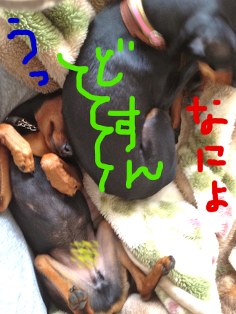 20120601-7.png