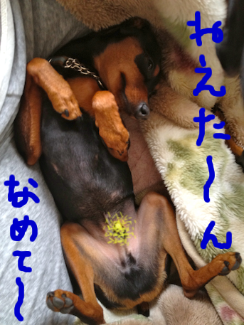20120601.png